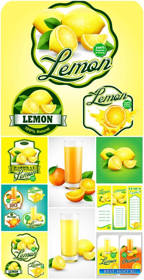 Лимон, апельсин, векторные этикетки и фоны с цитрусом / Lemon, orange, vect ...
