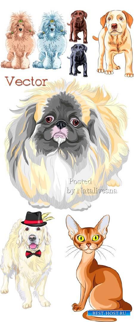 Рисованные собачки в Векторе