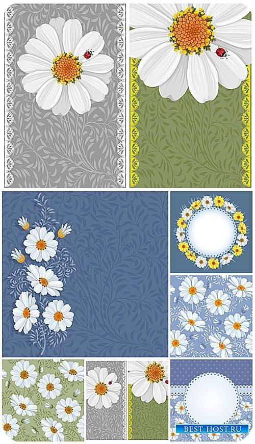 Ромашки, векторные цветочные фоны / Chamomile , vector floral backgrounds