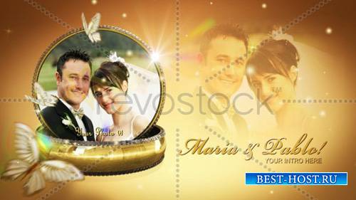 Our Wedding Rings Montage V2 715090 - Project for After Effects (RevoStock  ...
