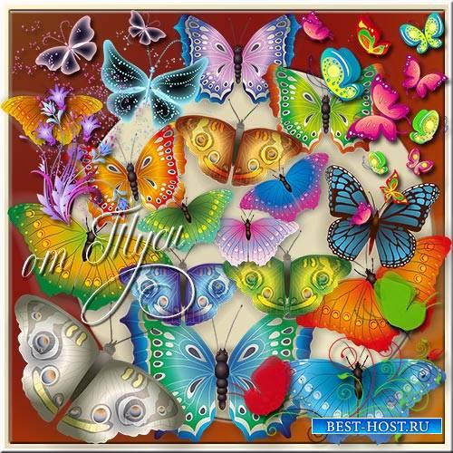 Клипарт - Бабочки