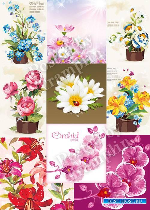 Цветы гуашь в векторе - Flowers gouache in a vector