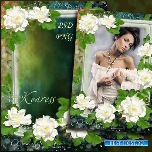 Романтическая рамка для фотошопа - Нежные розы для винтажного фото