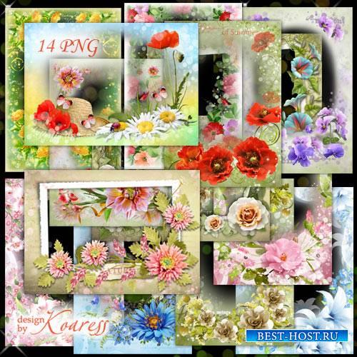 Набор png рамок для фотошопа - Нежность летних цветов