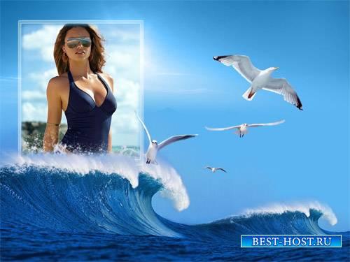 Рамка для фотошопа - Чайки на море