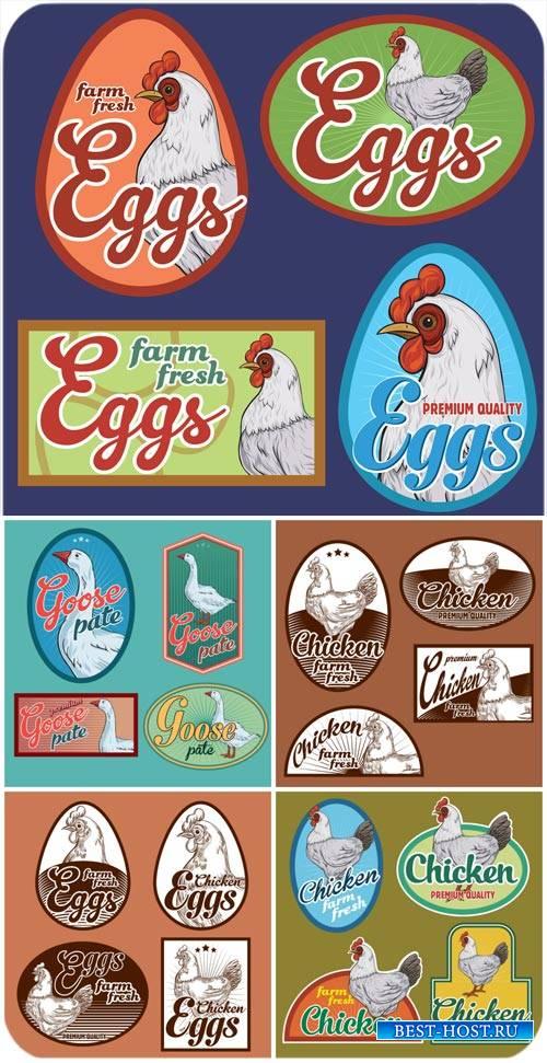 Этикетки с домашней птицей, курица, гусь в векторе / Labels with poultry, c ...