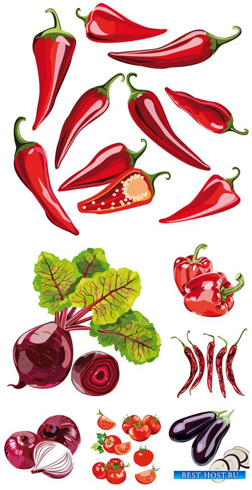 Овощи в векторе, перец, лук, томаты / Vector vegetables, peppers, onions, t ...