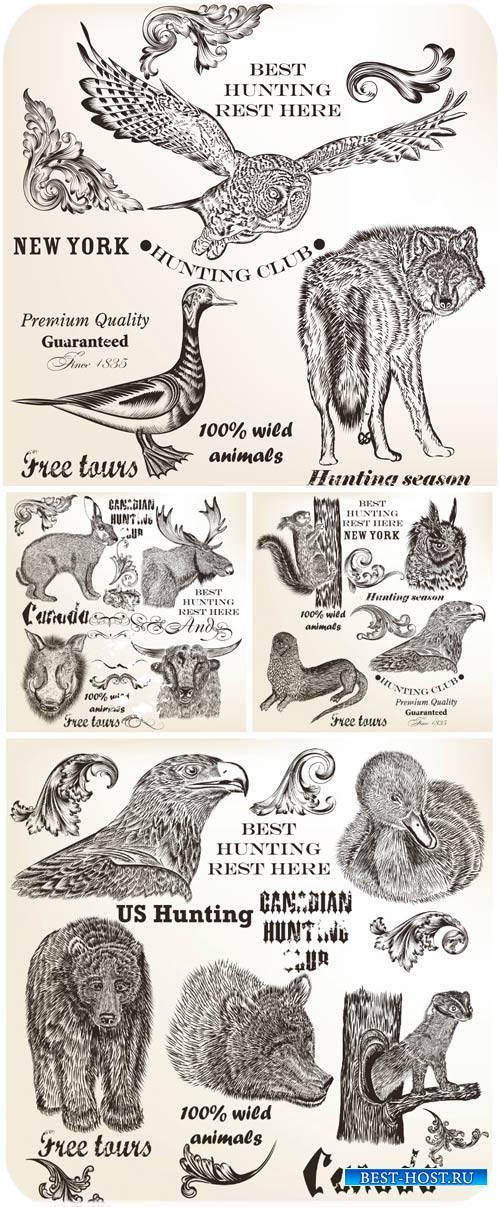 Животные в векторе, птицы, волк, медведь /  Vector animals, birds, wolves, bears