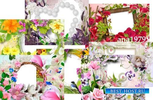 Рамки для фотошопа – Весна и лето