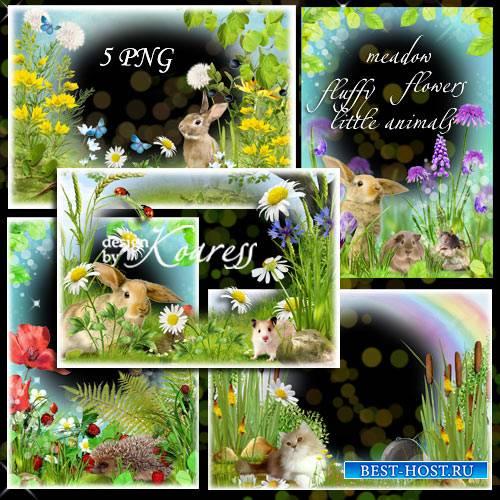 Набор детских png рамок для фотошопа - Среди лесных цветов и милых пушистиков