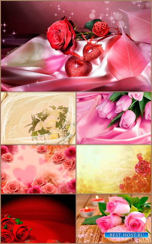 Романтические фоны - Нежные цветы 2
