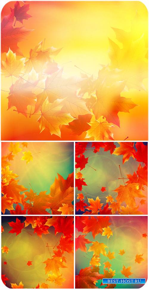 Осенние векторные фоны с желтыми листьями / Autumn vector background with yellow leaves #2