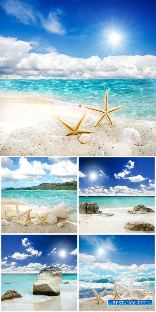 Морские пейзажи, природа / Seascapes, nature - Stock Photo