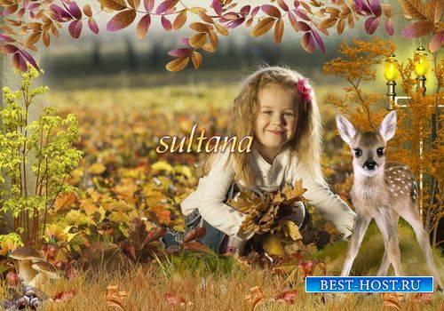 Осення рамка для фотошопа - Золотая осень в лесу