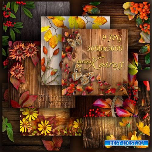 Осенние фоны для дизайна с цветами, ягодами, листьями
