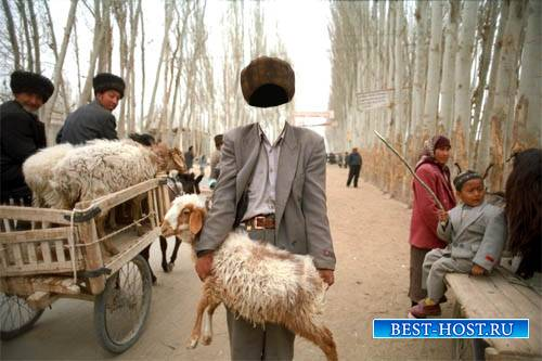 Шаблон psd мужской - Купил овцу