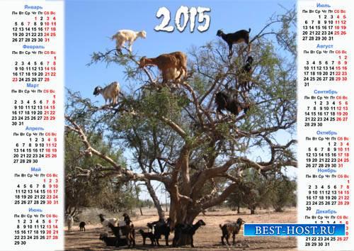 Календарь - В год козы можно многое
