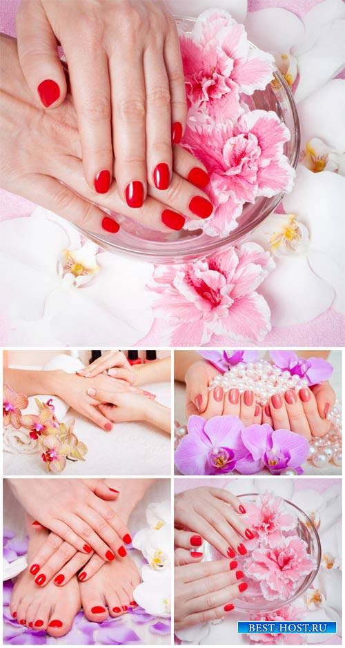 Маникюр и педикюр, женские руки и ноги / Manicure and pedicure, woman's han ...