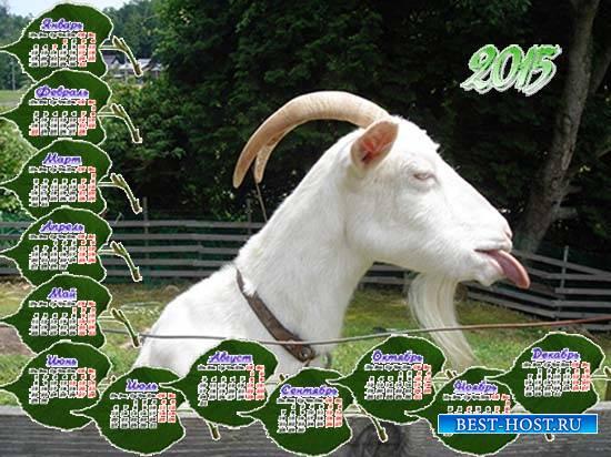 Календарь на 2015 год - Коза рогатая