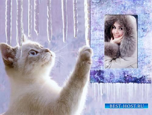 Рамка для фотошопа - Милый котенок зимой