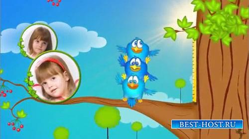 Детский проект для ProShow Producer - Жизнь птиц