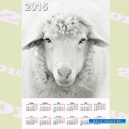 Календарь 2015 - Белая овца