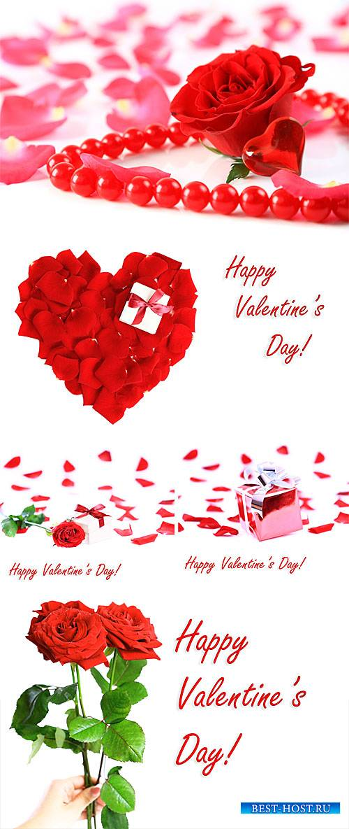 Valentine's Day, romantic vector background with roses