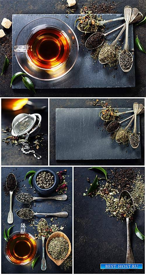 Tea, backgrounds with different kinds of tea - stock photos