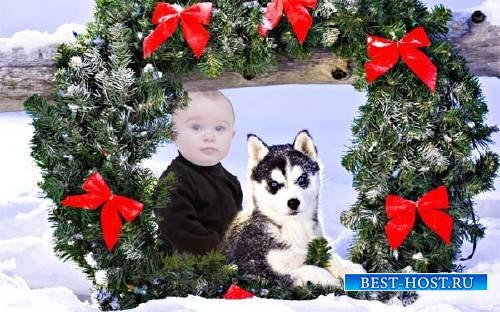 Шаблон для детей - Малыш и милая хаски под рождественским венком