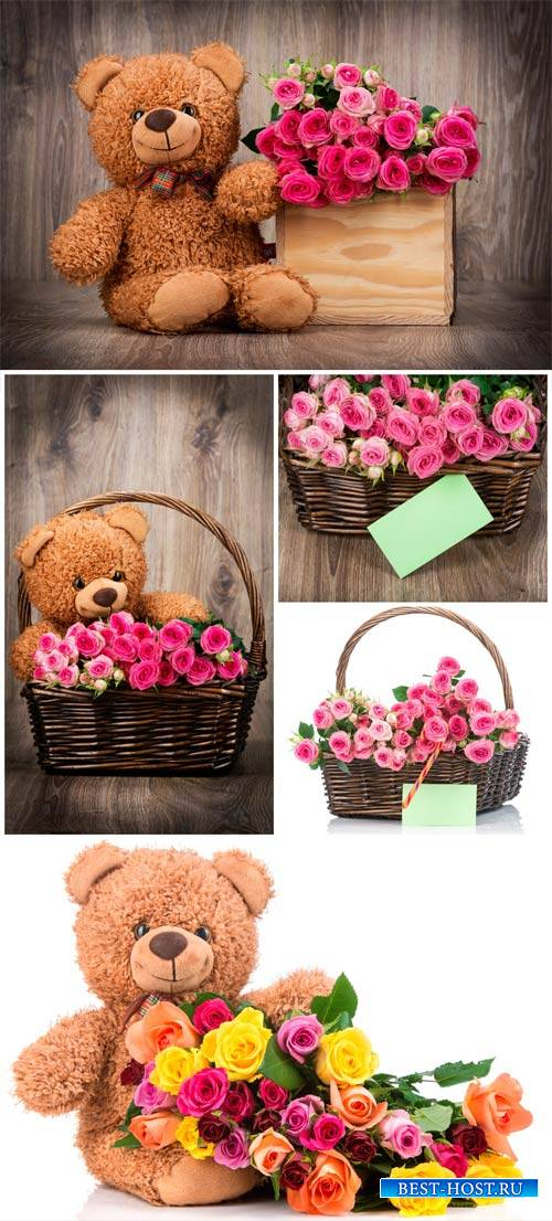 Teddy bear with a basket of roses - stock photos