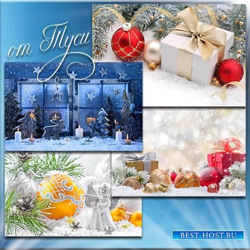 Новогоднее настроение присуще всем без исключения