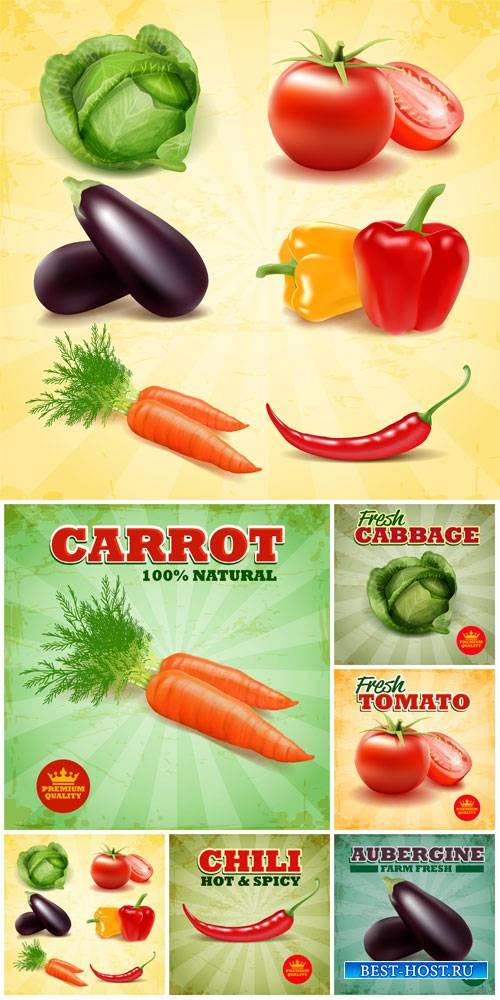 Vegetables, food labels vector
