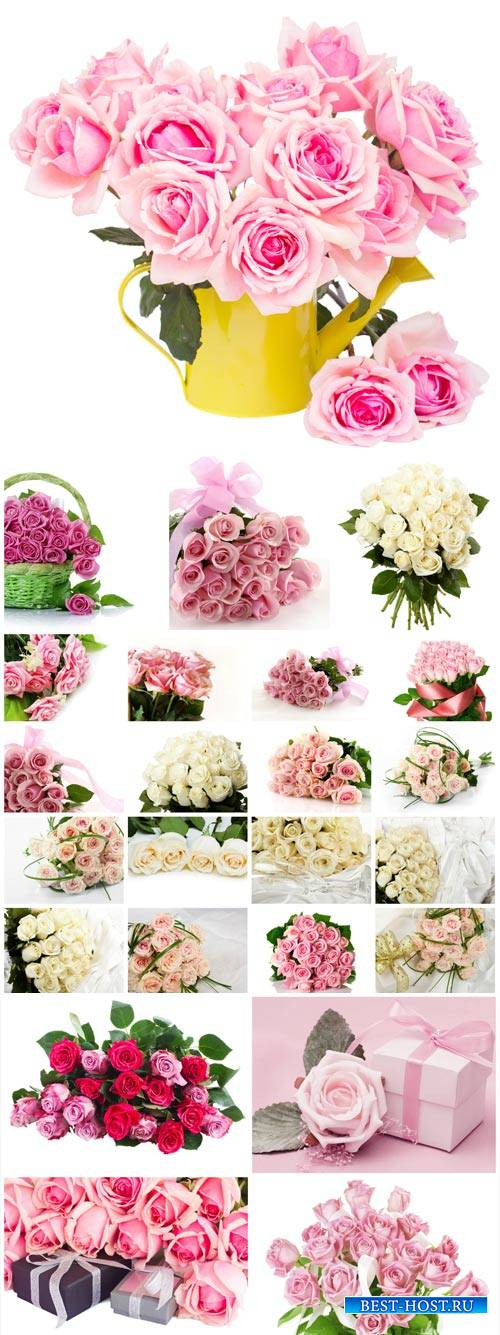 Beautiful roses, bouquets, flowers - Stock Photo