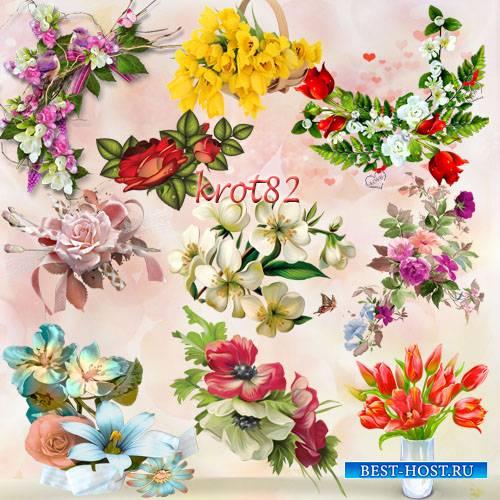Клипарт цветочные композиции на прозрачном фоне – Такие разные цветы