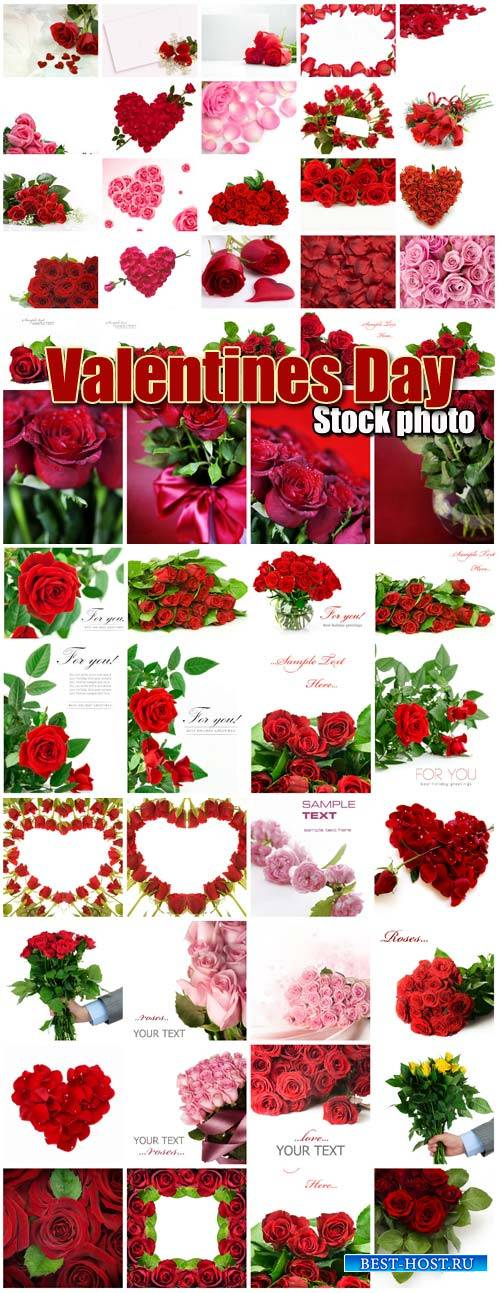 Valentine's Day, roses, hearts # 18 - stock photos