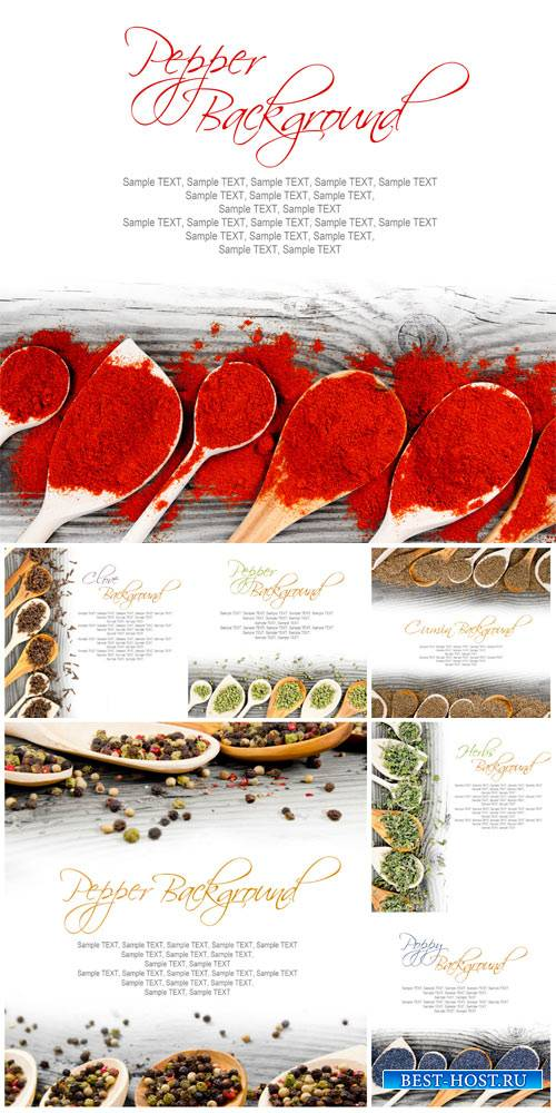 Spices on a white background - Stock photo