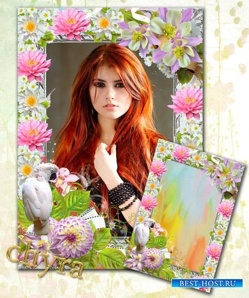 Рамка для фотографии - Хоровод цвето