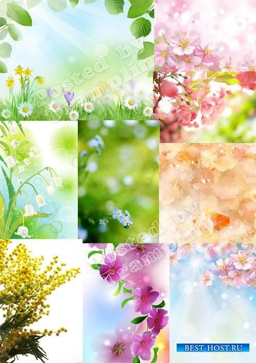 Красивые весенние фоны отличного качества