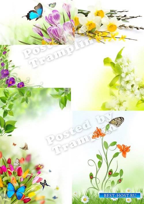 Весенние цветочные фоны Set 1