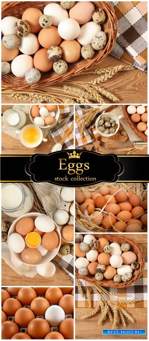 Eggs, quail eggs and milk- stock photos