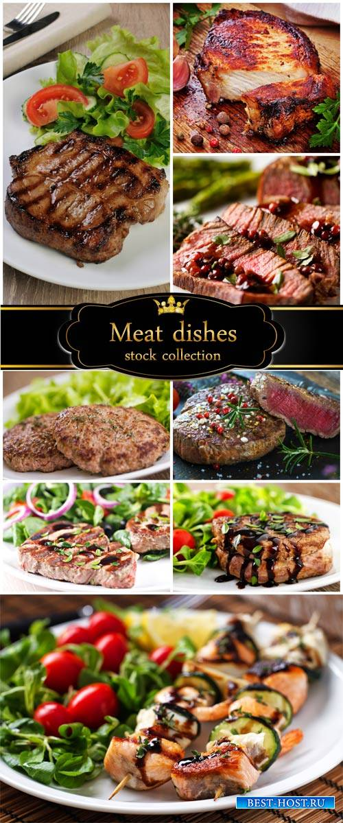 Delicious meat dishes - stock photos