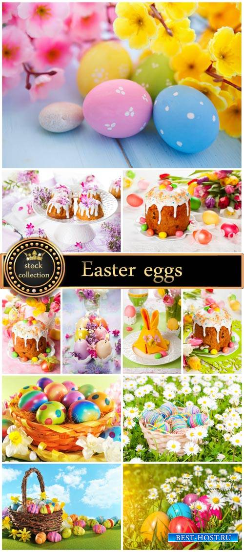 Easter eggs and flowers - Stock Photo