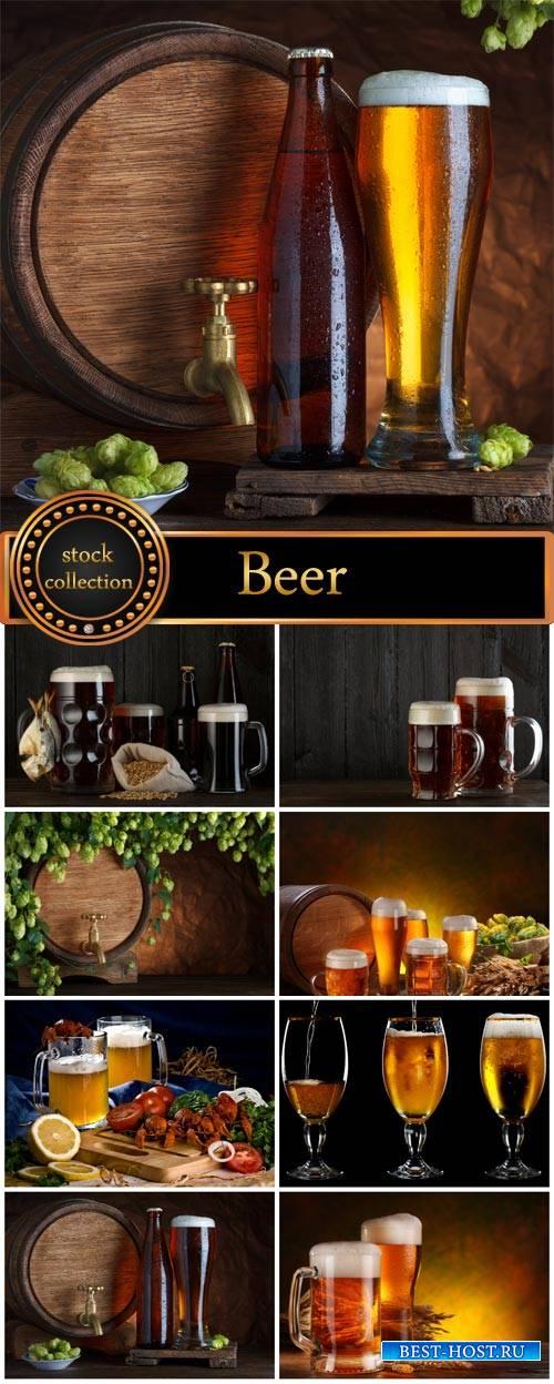 Beer barrels of beer, hops, fish - stock photos