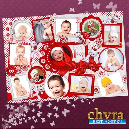 Коллаж для фотографий новорожденной девочки – Двенадцать месяцев