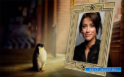 Рамка для фотошоп - Маленький пингвин любуется вашим фото