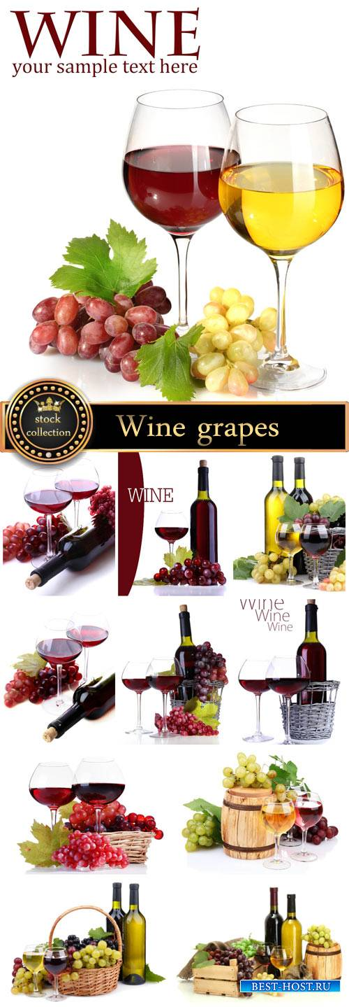 Wine, basket with grapes - stock photos