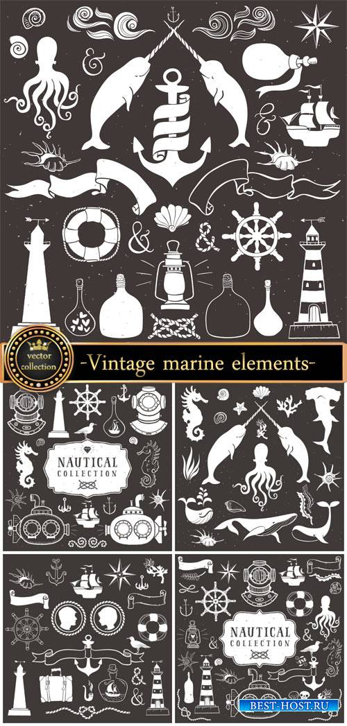 Vintage marine elements in the vector