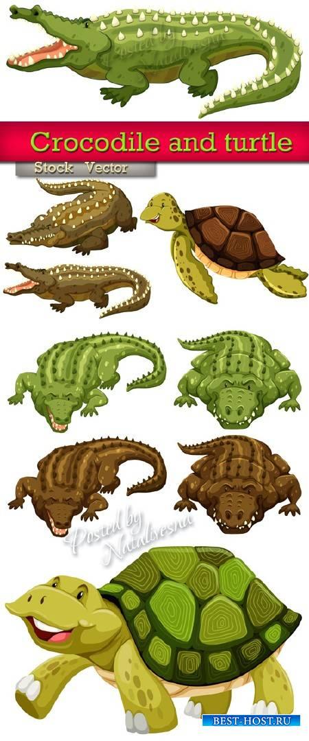 Крокодилы и черепахи  в Векторе