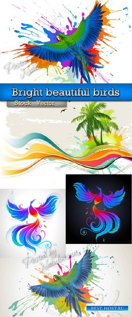 Яркие красивые птицы в Векторе