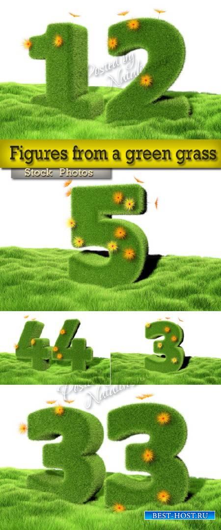 Цифры из зеленой травы и цветов